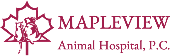 Mapleview Animal Hospital